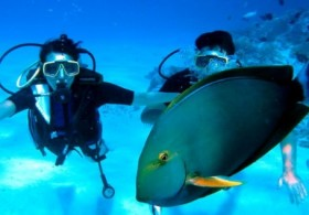 Initiation Dive by Bora Diving Center