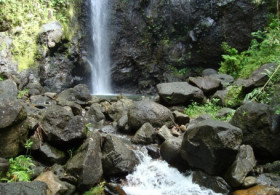 Walk at the 3 Cascades (moderate level) - Half Day