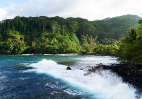 Tahiti Island Tour - (Half Day)