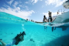 Diving in the seas of the islands of Tahiti
