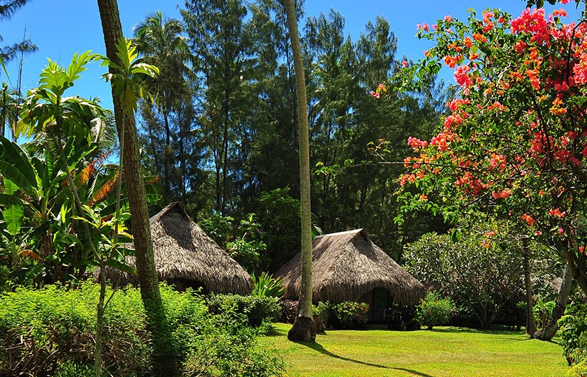 Garden Bungalows at the hotel Hibiscus on Moorea island